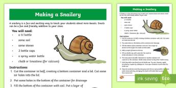 Making a Snailery Instructions Activity - Snails, Shell, Snailery, Mollusc, Living Things,Irish