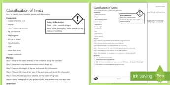 Classification of Seeds Investigation Instruction Sheet Print-Out - Investigation Help Sheet, scientific method, practical, pupil instructions, classification, seeds, c