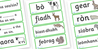 Animal Word Cards Scottish Gaelic - scottish gaelic, animal word cards, word cards, animals, language, languages, scotland, key words, flash cards, flashcards, gaels, celtic, literacy, aids, sheep, cow, deer, otter, squirrel, rabbit, seal, zebra, lio
