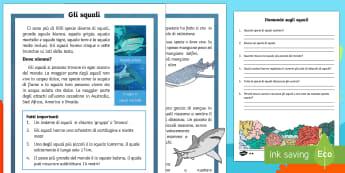 Gli Squali Lettura Differenziata - squali, creature marine, domande, risposte, lettura, scienze, informazioni, italiano, italian