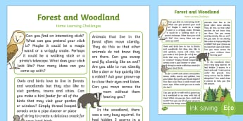 Forest and Woodland Home Learning Challenges Reception FS2 - woodland, forest, animals, british wildlife, trees, homework, home school links, parents, EYFS