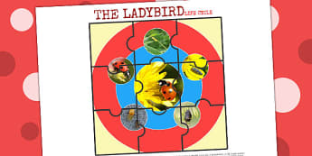 Life Cycle of a Ladybird Jigsaw - life cycles, cutouts, games