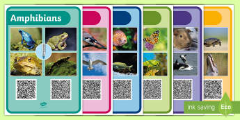 Animal Groups Differentiated Texts Code Hunter - QR Codes, differentiated, text, animal, group, sort, classify, characteristic,  mammal, amphibian, r