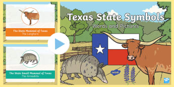 Texas State Symbols Words and Pictures PowerPoint -  texas vocabulary, longhorn cow, bluebonnet, pecan tree, monarch butterfly, friendship State, Texas