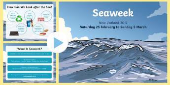 Seaweek PowerPoint - Seaweek, sea, powerpoint, new zealand, nz, seaweek powerpoint