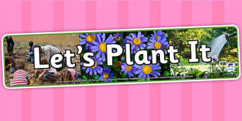 Lets Plant It Photo Display Banner - science, IPC, banner