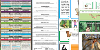 EYFS Forest and Woodland Bumper Planning Pack - Early Years planning, plan, Foundation, continuous provision, enhancements adult led, topic planning