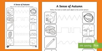 A Sense of Autumn Pencil Control Activity Sheets - Exploring my world, seasons, Aistear, school trip, forest, blackberries, squirrels, leaves, bark, mo