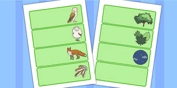 Owl Babies Drawer-Peg-Name Labels - Owl Babies, Martin Waddell,  Editable Drawer-Peg-Name Labels-Classroom Label Templates, Resource Labels, Name Labels, Editable Labels, Drawer Labels, Coat Peg Labels, Peg Label, KS1 Labels, Foundation Labels, Found