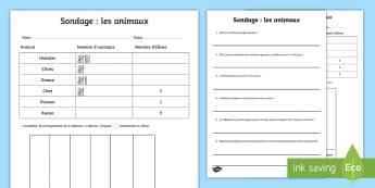 Feuille d'activités : Sondage sur les animaux - Sondage, calcul, animaux, classe, groupe, cycle 3