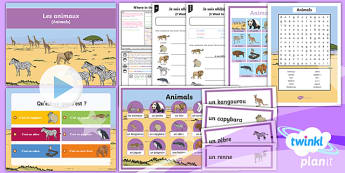 French: Where in the World?: Animals Year 4 Lesson Pack 5