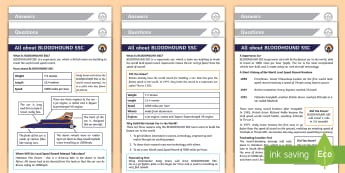 KS1 All About Bloodhound SSC Differentiated Reading Comprehension Activity - STEM, world land speed record, supersonic car, british team, y1, y2, Engineering, non-fiction