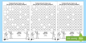Winter Themed Missing Numbers Number Square Arabic/English