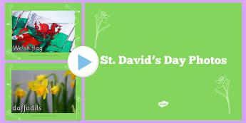 St Davids Day Photo PowerPoint - st david, st davids day, photos