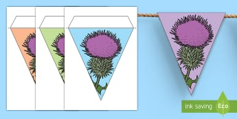St Andrew's Day Thistle Display Bunting - Scotland, st andrew, thistle, st andrew display, national emblem ,Scottish