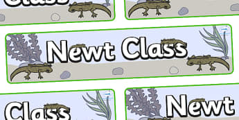 Newt Themed Classroom Display Banner - Themed banner, banner, display banner, Classroom labels, Area labels, Poster, Display, Areas