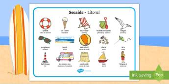 Seaside Word Mats English/Romanian - https://www.twinkl.co.uk/resource/t-t-127-seaside-word-mats  Word Mats, EAL, seaside, communication,