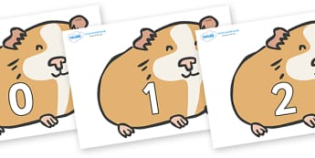 Numbers 0-50 on Guinea Pigs - 0-50, foundation stage numeracy, Number recognition, Number flashcards, counting, number frieze, Display numbers, number posters