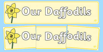 Our Daffodils Display Banner - our daffodils, display banner, display, banner