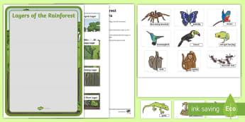 Layers of the Rainforest Anchor Chart Activity - Rainforest, Layers of the rainforest, Rainforest Animals, rainforest habitat, habitats, Pre-k scienc