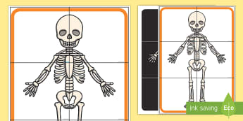 Skeleton Hunt Cards - funny bones, my body, bones, skull, Halloween,