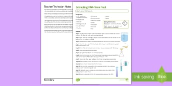 Extracting DNA from Fruit Investigation Instruction Sheet  - Practical, DNA, cells, nucleus, biology, inheritance