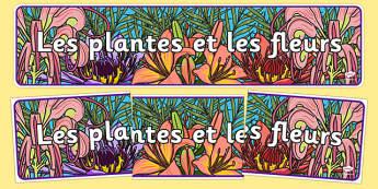 Les plantes et les fleurs - french, plants and flowers, IPC display banner, IPC, plants and flowers display banner, IPC display