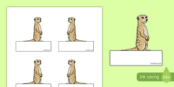 Meerkat Themed Self-Registration Labels - meerkat, safari, self registration, labels, display