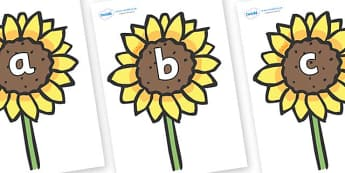 Phase 2 Phonemes on Sunflowers - Phonemes, phoneme, Phase 2, Phase two, Foundation, Literacy, Letters and Sounds, DfES, display