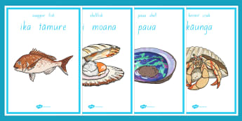 Under the Sea Display Posters Te Reo Māori - sea, seaweek, animals, Māori