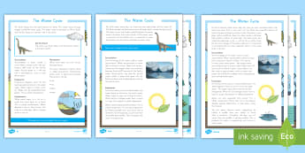 The Water Cycle Differentiated Reading Comprehension Activity - Science Reading, Water Cycle, Condensation, Precipitation, Runoff, Transpiration, Accumulation, Wate