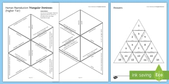 Human Reproduction Tarsia Triangular Dominoes - Tarsia, biology, human reproduction, menstrual cycle, menstruation, hormones, hormone, endocrine sys, plenary activity