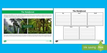Rainforest Senses Worksheet / Activity Sheet - CfE Literacy, writing, topic, social studies, senses, imagination, rainforests,Scottish