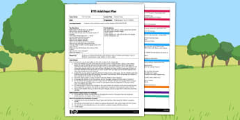 Making Tracks EYFS Adult Input Plan - making tracks, eyfs, input