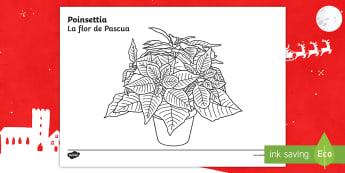 * NEW * KS1 Poinsettia Colouring Page - English / Spanish - EAL,christmas, flowers, red, tradition, traditional, mexico, mindfulness, relax, worksheet,Spanish-t