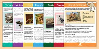 meerkat mail,  - desert animals, desert, animals, fact sheets, fact, sheets