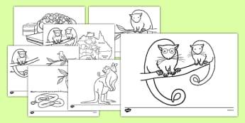 Bush Magic Colouring Sheets - australia, bush magic, possum magic, colouring sheets