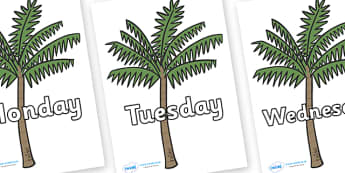 Days of the Week on Palm Trees - Days of the Week, Weeks poster, week, display, poster, frieze, Days, Day, Monday, Tuesday, Wednesday, Thursday, Friday, Saturday, Sunday