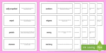 Plant Reproduction Loop Cards