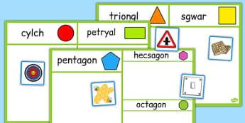 Trefnu Siapiau 2D - welsh, cymraeg, 2d shape, sorting activity, sorting, activity