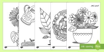 أوراق تلوين لليقظة العقلية في موضوع النباتات والنمو - النباتات، نباتات، تلوين، علوم، يقظة عقلية، عربي، نشاط