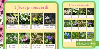 I Fiori Primaverili Poster - primavera, primaverile, stagioni,s tagionali, italiano, italian, poster, materiale, scolastico, fior