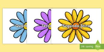 Dias da semana em flores - dia,semana,mes,dias,semanas,meses,ano,anos,tempo,gestao,sala de aula, calendario, vocabulario
