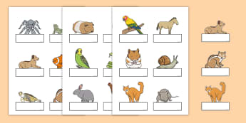 Editable Self Registration Labels (Pets) - Self registration, register, Pets, editable, labels, registration, child name label, printable labels, cat, dog, rabbit, mouse, guinea pig, rat, hamster, gerbil, horse, puppy, kitten, snake, chinchilla, snai