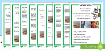 Winter Differentiated Reading Comprehension Activity Arabic/English - Winter Comprehension Differentiated Worksheets - winter, reading, comprehension questions, answers,