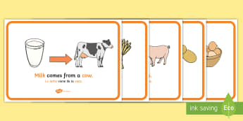 Where Does Food Come From Display Posters English/Spanish  -  food, display, posters, where does food come from, origin of food, cooking, cow, milk, pig, bacon,