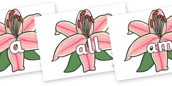 Foundation Stage 2 Keywords on Lilies - FS2, CLL, keywords, Communication language and literacy,  Display, Key words, high frequency words, foundation stage literacy, DfES Letters and Sounds, Letters and Sounds, spelling