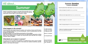 Summer Comprehension Differentiated Worksheet / Activity Sheets English/Italian - Summer Comprehension Differentiated Worksheet / Activity Sheets - summer, reading, comprehension questions, answ