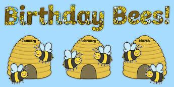 Birthday Bees Display Pack