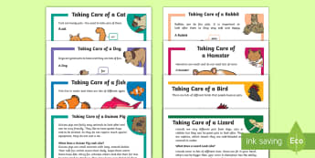 KS1 Pet Care Reading Comprehensions Pack - KS2 National Pet Month (April 2017), pets, animals, pet month, cat, hamster, dog, bird, lizard, fish